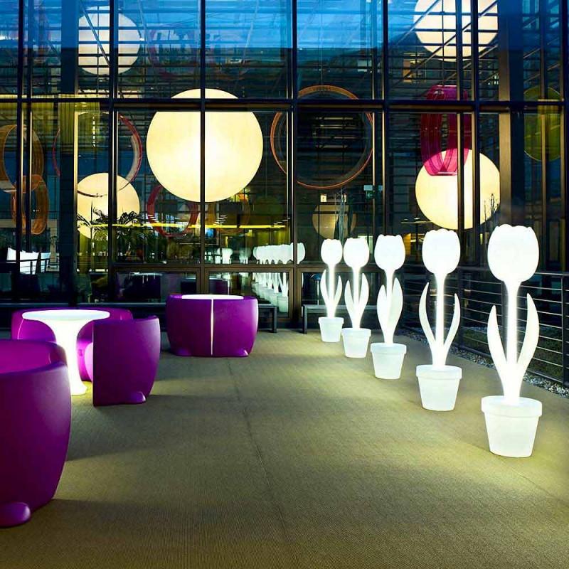 Dekorimi i Ndritshëm për Brendësinë e Dizajnit Modern - Tulipani nga Myyour