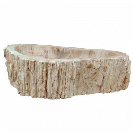 Mbajtësja e sipërfaqes së drurit të fosileve Goa